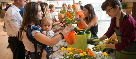 Duminica cu flori şi sfaturi de la grădinari