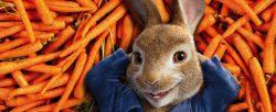 desene animate peter rabbit